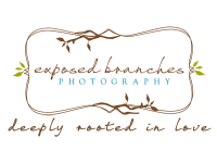 Exposed Branches Photography